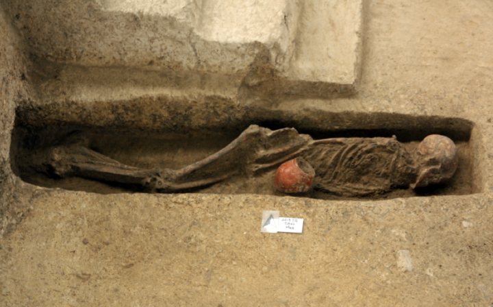 Human skeleton from the Qiaotou platform mound
